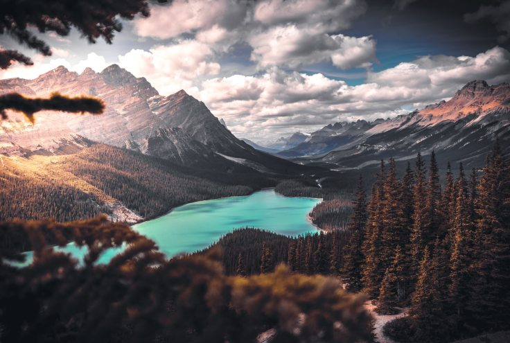 scenic-photo-of-lake-surrounded-by-trees-1903702
