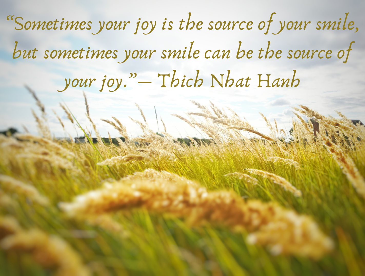 """""""Sometimes your joy is the source of your smile, but sometimes your smile can be the source of your joy.""""― Thich Nhat Hanh"""
